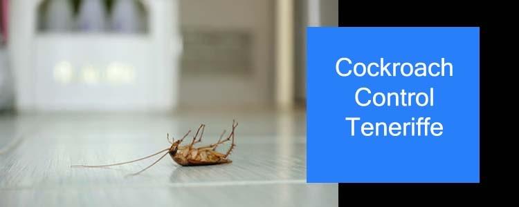 Cockroach Control Teneriffe